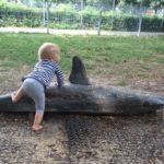 Spielplatz – Tipp | Währingerpark Wien