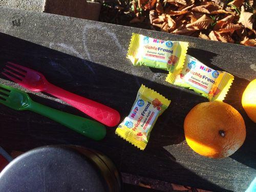 hipp-snack-die kleine botin-5
