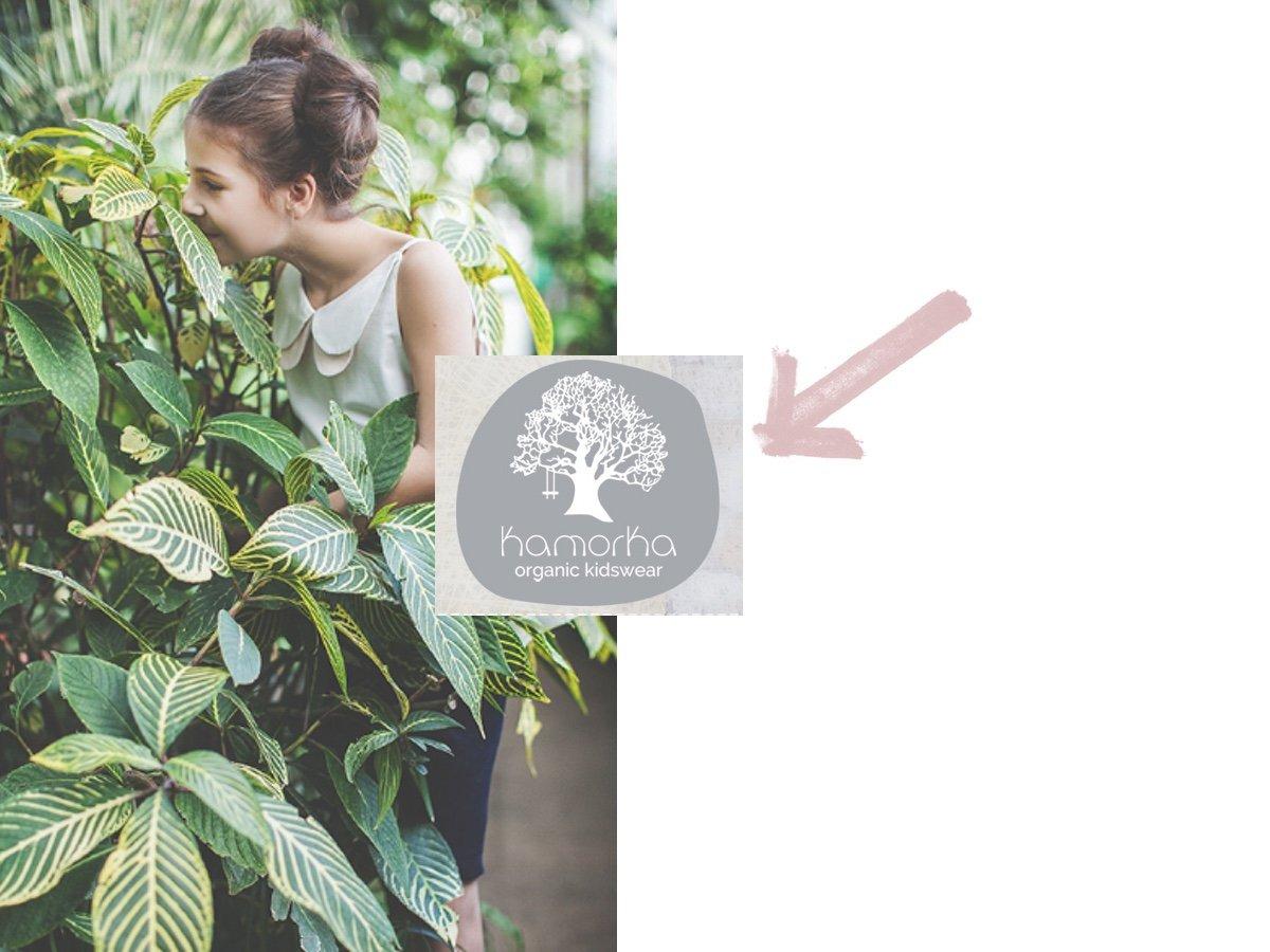 kamorka organic die kleine botin beitragsbild
