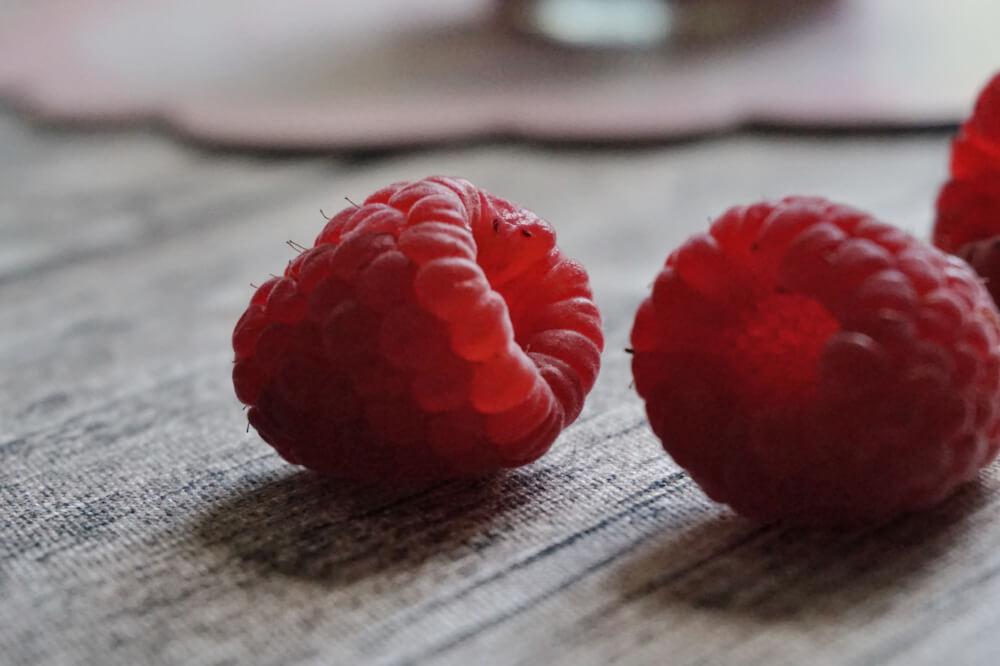 chia himbeer marmelade die kleine botin 5