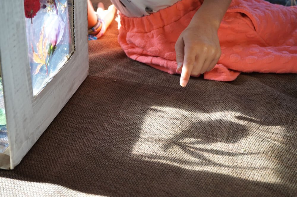 blumen pressen sonnenlichtbox die kleine botin 6