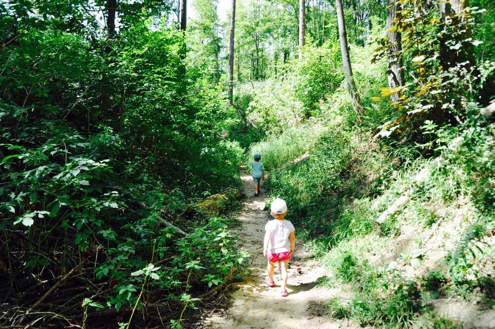 kuernbergerwald sommer am spielplatz 3