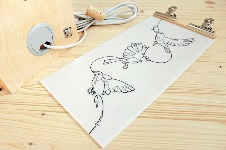 CORDIAL birds interview 1 1