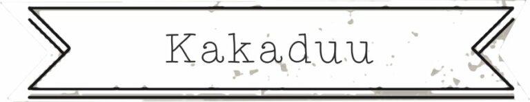 shop small label kakaduu 1