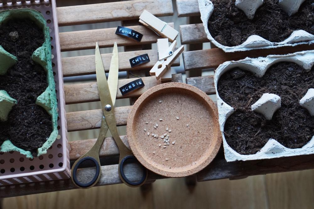 urban gardening anzucht 6
