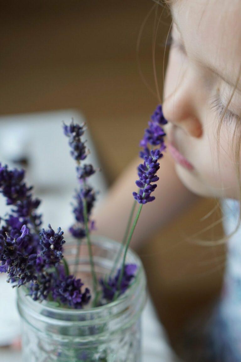 Lavendel Taler | wertvolles Geschenk für guten Schlaf