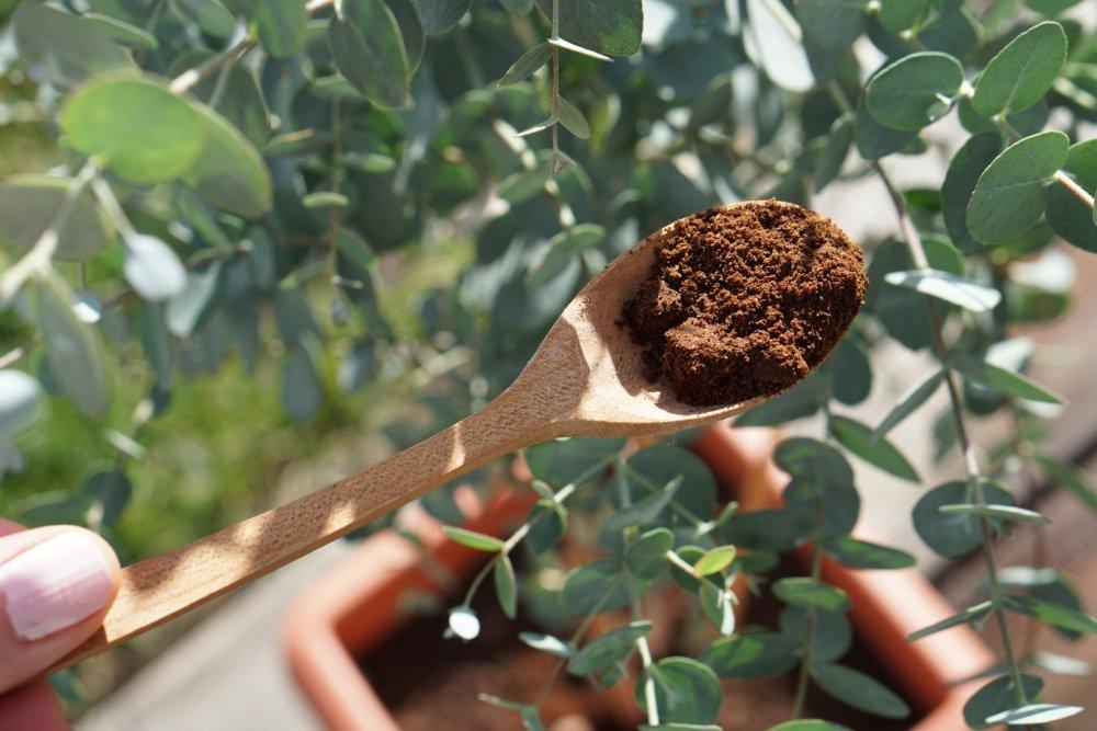 bio kaffee duenger 3 1