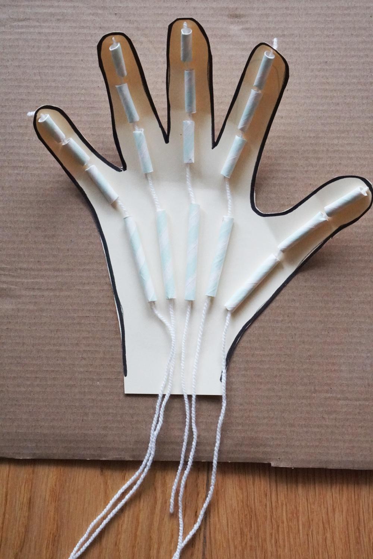 Anatomie für Kinder: Wir basteln ein Skelett und eine bewegliche Hand