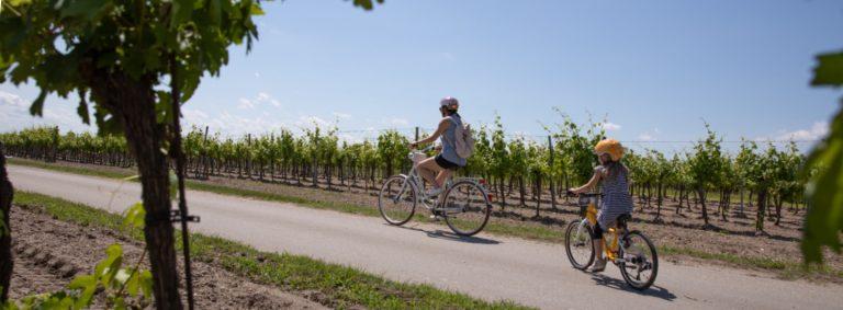Mit dem Fahrrad in die Schule: woom4 im Alltag | Tipps und Regeln für Kids ab 6